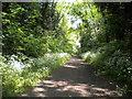 SO8798 : Railway walk passing Finchfield by Richard Vince