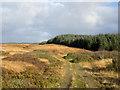 NR4070 : Moorland beside rough road by Trevor Littlewood