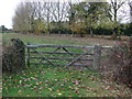 SJ7059 : Field entrance off Warmingham Road by JThomas