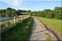 TQ3328 : Footpath across the dam by N Chadwick