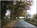 SJ5651 : Bend in Nantwich Road by JThomas