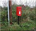 SJ4862 : Elizabeth II postbox on Church Lane, Hargrave by JThomas