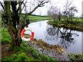 H5070 : Camowen River, Donaghanie / Recarson by Kenneth  Allen