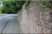 TQ5446 : South Wall to Hall Place Park by N Chadwick