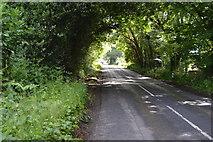 TQ5346 : Penshurst Rd by N Chadwick