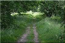 TQ5044 : Eden Valley Walk by N Chadwick
