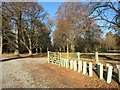SU7685 : Track into Oaken Grove by Des Blenkinsopp