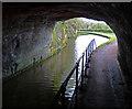 SO8584 : Dunsley Tunnel No 31 by Mat Fascione