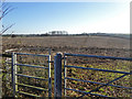 SP6335 : Footpath across a ploughed field by Robin Webster