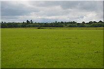 TQ5347 : Low Weald scenery by N Chadwick