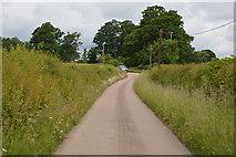 TQ5247 : Track to Wickhurst Farm by N Chadwick