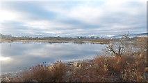 NH5346 : River Beauly below Beauly by Julian Paren