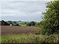 SJ5646 : Farmland north-east of Marbury in Cheshire by Roger  Kidd