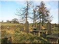 SE0434 : Horkinstone Baptist Old Burial Ground 2 by Des Blenkinsopp