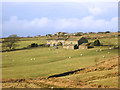 SE0434 : Farm and Fields, Whinny Hill Foot by Des Blenkinsopp