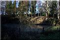 SU7420 : Pond by Hangars Way by Robert Eva