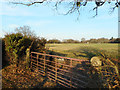 SU9567 : Gate along the Footpath by Des Blenkinsopp