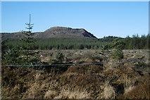 NS5012 : A clear felled area by Richard Webb