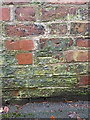 SJ4811 : OS benchmark - Kingsland, wall on Canonbury by Richard Law