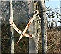 TG2809 : Greenhouse windows ventilation regulator by Evelyn Simak