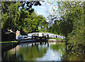 SJ5345 : Llangollen Canal near Bradeley Green, Cheshire by Roger  Kidd