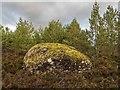 NH6634 : Erratic- Loch Bunacton by valenta