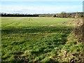 SO9636 : Farmland at Conderton by Philip Halling