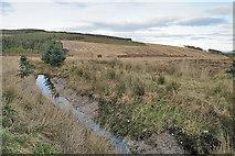 NJ2447 : Drainage Ditch by Anne Burgess
