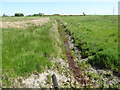 H9430 : Drainage ditch on the north side of Coiners Lane by Eric Jones