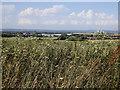SU4786 : Harwell research campus by Rudi Winter
