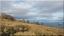 NH8066 : The side of Gallow Hill by Julian Paren