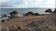 NH7965 : Beach beside McFarquhar's Bed by Julian Paren