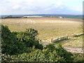 SP9617 : Chalk quarry at Ivinghoe Aston by Simon Mortimer