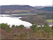 NH6589 : Dornoch Firth and the side of A'Chraisg by Julian Paren