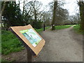 SW7832 : The western entrance to Tregoniggie Woods by Rod Allday