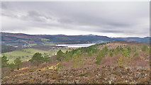 NH6589 : Inner Dornoch Firth from A'Chraisg by Julian Paren