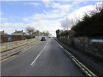 NO2507 : Newton Road (B936), Falkland by Bill Kasman