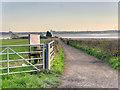 SJ4781 : Hale, Lighthouse Road by David Dixon