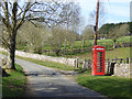 SP0811 : Red phone box by Robin Webster