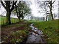H4574 : Stream, Killybrack / Mountjoy Forest East Division by Kenneth  Allen
