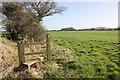 SJ5261 : Stile and footpath on Tiverton Farm by Jeff Buck