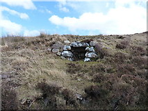 NG8976 : Unknown stone structure by Richard Law