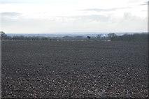 TL3758 : Farmland south of Port Way by N Chadwick