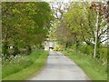 ST7592 : Drive to Leys Farm by Philip Halling