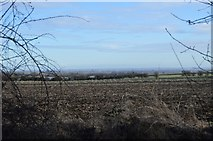 TL3858 : Far view to Cambridge by N Chadwick