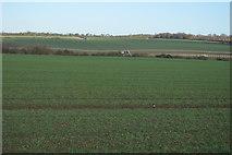 TL3858 : View down to Bin Brook by N Chadwick