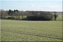 TL3958 : Farmland and woodland by N Chadwick