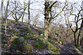 SK2579 : Padley Gorge by Malcolm Neal