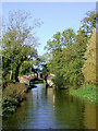 SJ9312 : Canal south of Penkridge in Staffordshire by Roger  Kidd