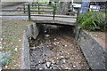 SX5455 : Long Brook by N Chadwick